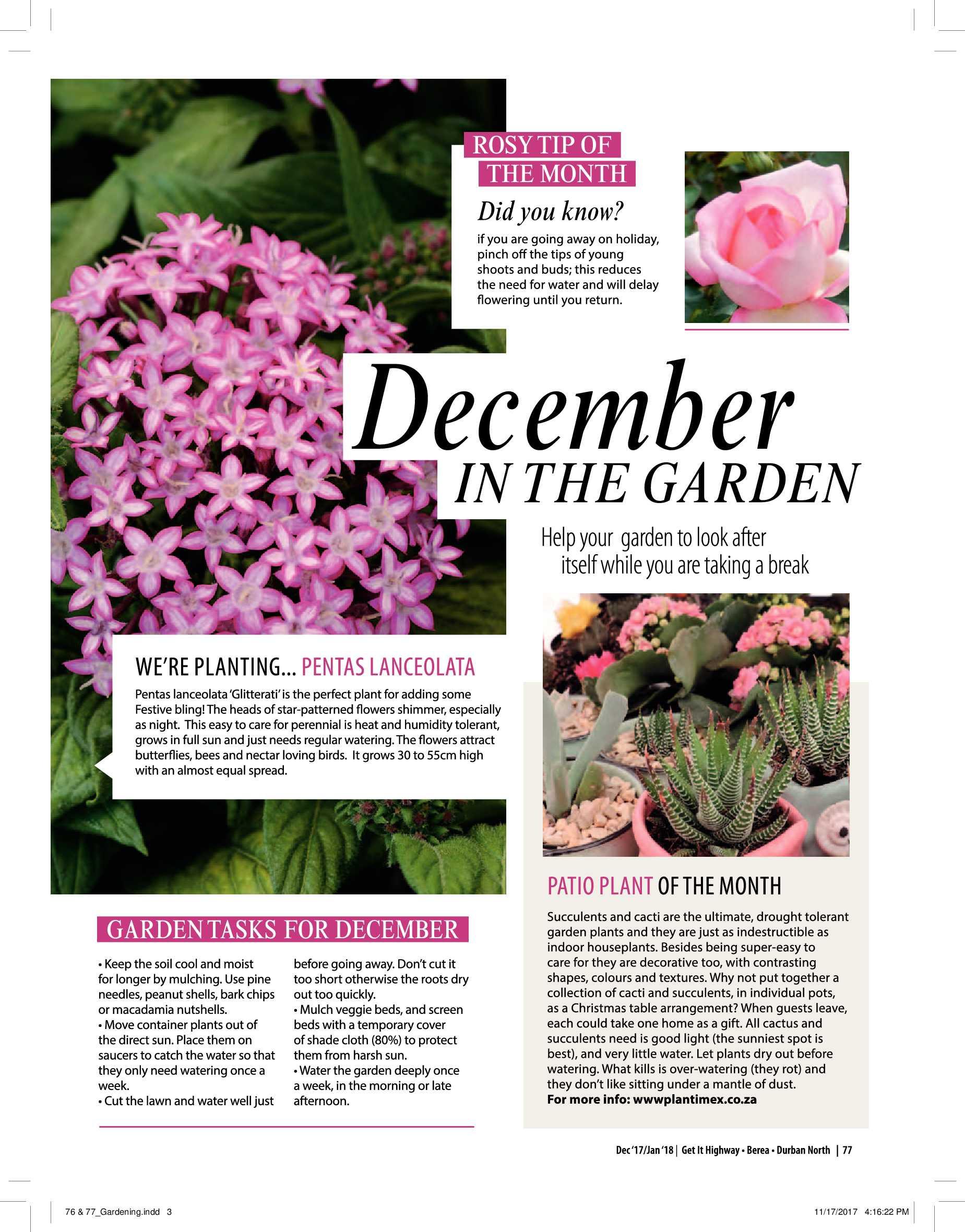 get-magazine-durban-december-2017-epapers-page-79