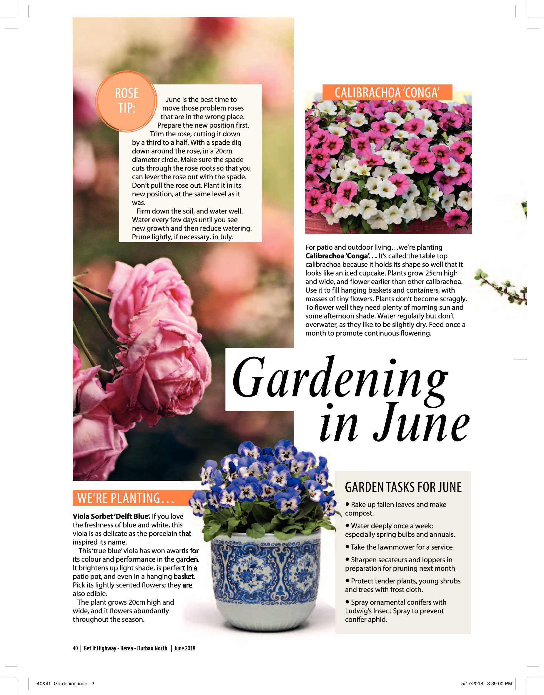 get-magazine-durban-june-2018-epapers-page-42