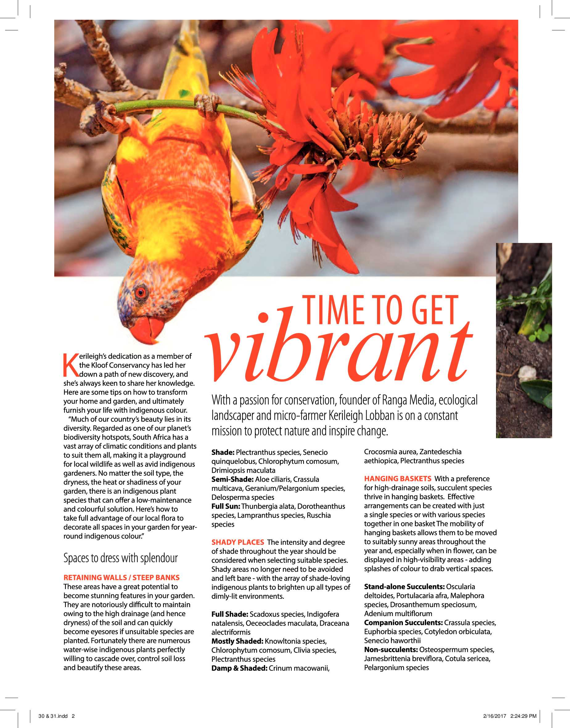 durban-get-magazine-march-2017-epapers-page-32